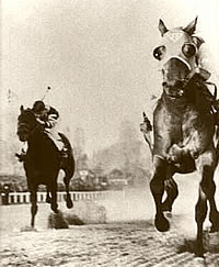 Seabiscuit & War Admiral 1938 Match Race.  This match race of the century pitted Man O'War's own son and grandson against each other. War Admiral, the Triple Crown winner, and the little upstart, Seabiscuit, gave race fans an incredible moment in racing history.